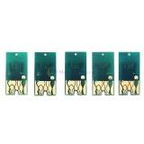 Чипы картриджей для Epson Stylus Pro 7700 и 9700, комплект 5 цветов