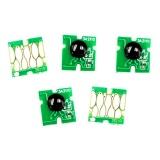 Чипы для ПЗК к Epson Expression Premium XP-7100, XP-630, XP-830, XP-530, XP-900, XP-640, XP-540, XP-645, XP-635 (совм. T3331, T3341-T3344, T3351, T3361-T3364), автоматически обнуляемые, комплект 5 цветов