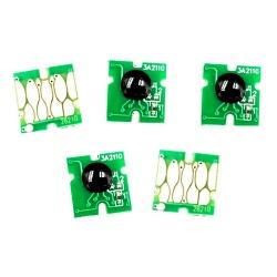 Чипы к ПЗК для Epson Expression Premium XP (под оригиналы T273, регион Северная Америка), автоматически обнуляемые, 5 цветов
