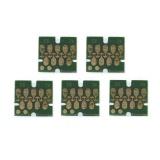 Чипы для ПЗК к Epson Expression Premium XP-6000, XP-6005, XP-6100, XP-6105 (совм. T02E1, T02F1-T02F14, T02G1, T02H1-T02H14), автоматически обнуляемые, комплект 5 цветов