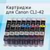 Выпущены чипы, СНПЧ, ПЗК и неоригинальные картриджи для Canon Pro-10 и Pro-100