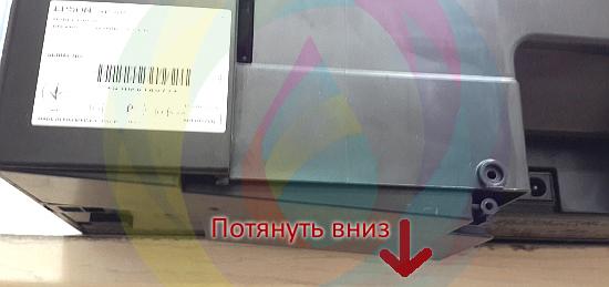 Снятие памперса МФУ Epson - снимаем емкость, потянув ее вниз